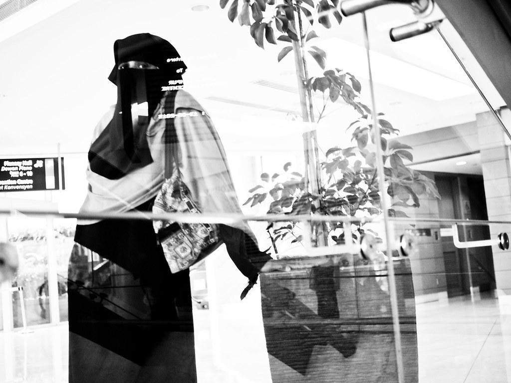 玻璃与面纱候 Behind the glass and the Veil