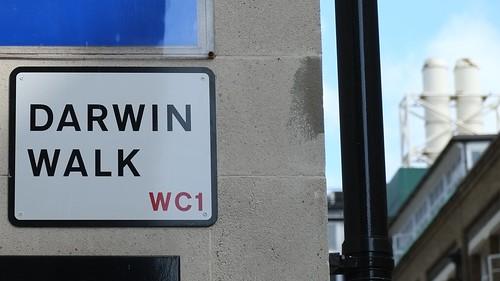 Darwin Walk