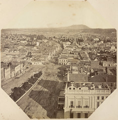 View of Sturt St Ballarat from above  (1882)
