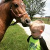 Horsey kisses #FergletOutside #unpreschool #AmishMarketDay