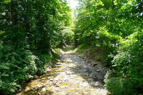 Stream, D & H Canal Linear Trail