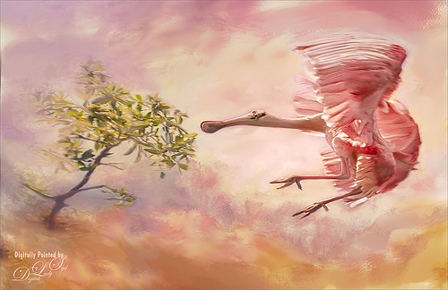 Image of a Roseate Spoonbill landing in a tree