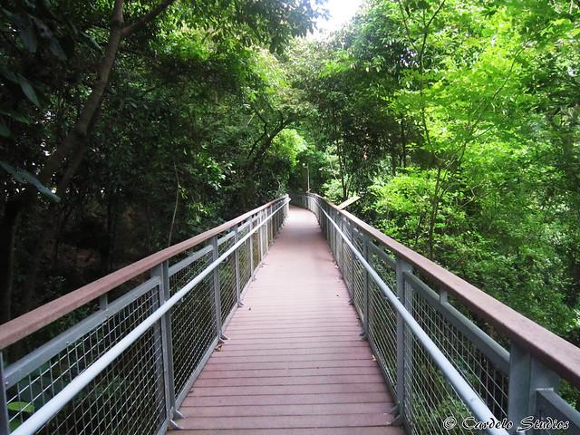 Nature Walk 01