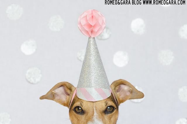 Cumpleaños de Gara 2015.