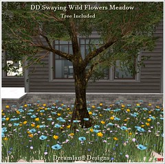 DD Swaying Wild Flowers Meadow Vendor
