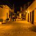 2016 - Mexico - Querétaro - Night Walkers por Ted's photos - Returns Mid May