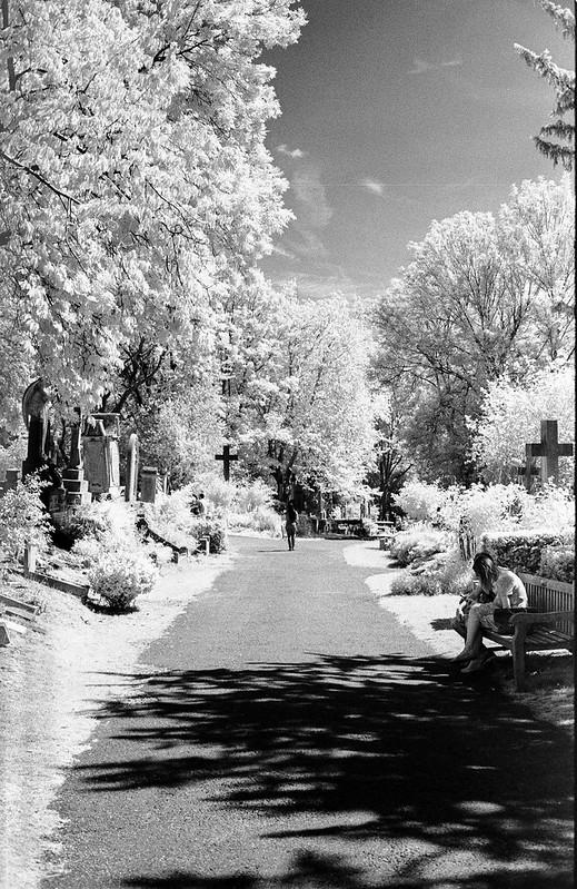 highgate cemetery infra red