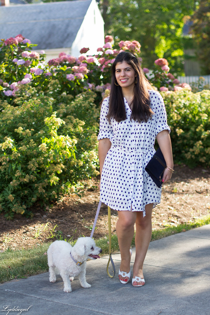 polka dot shirt dress, clare v clutch, dog walking outfit-2.jpg