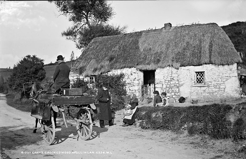 robertfrench williamlawrence lawrencecollection lawrencephotographicstudio thelawrencephotographcollection glassnegative nationallibraryofireland biddygrayscottage westmeath ireland thatchedcottage yard sidecar jarvey children bucket limerickbybeachcomber cottage jauntingcar tophat family countymeath mysterysatchel mysteryman
