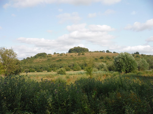 St. Catherine's Hill from the Watermeadows