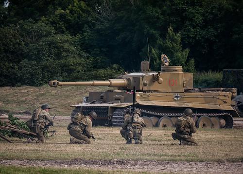 Tiger Under Attack