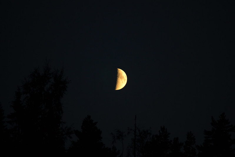 148 av 365 - Halvmåne