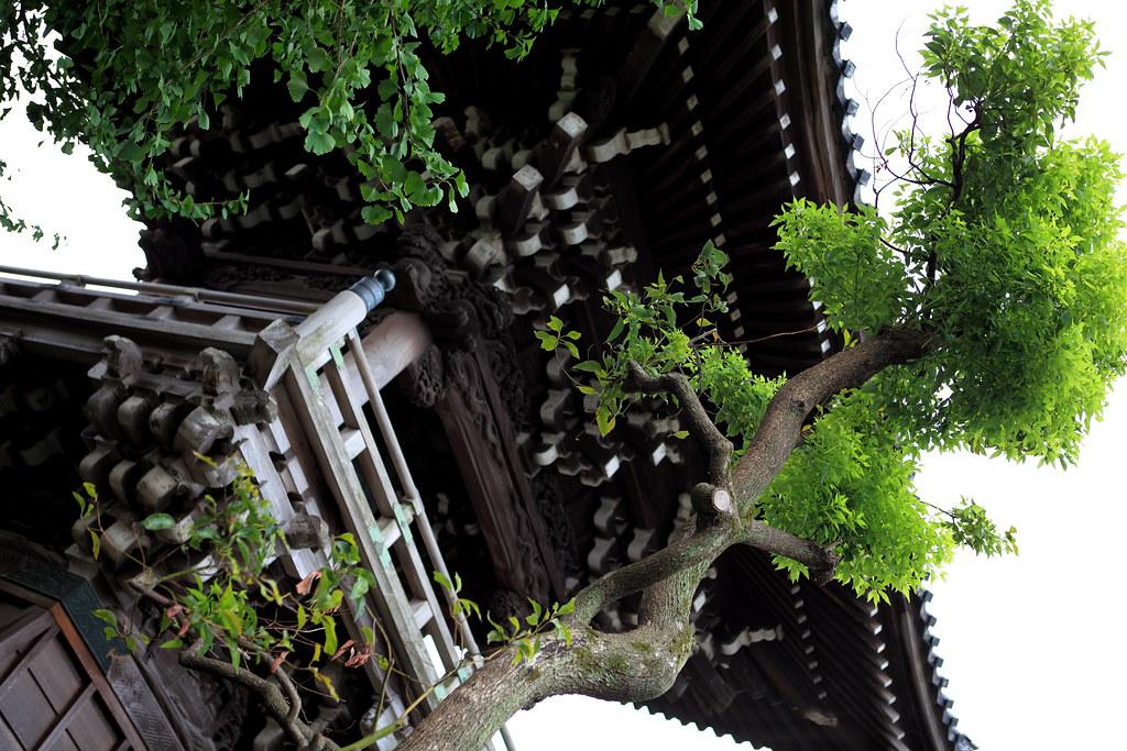 Shibamata Taishaku-ten Temple In Katsushika, Tokyo