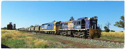 48156+8175 cruise eastward through Gunningbland with a loaded grain train.