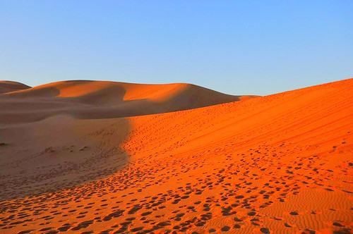 morocco 摩洛哥 erfoud 伊尔富德 sahara sunrise 撒哈拉 desert 沙漠 dawn 日出