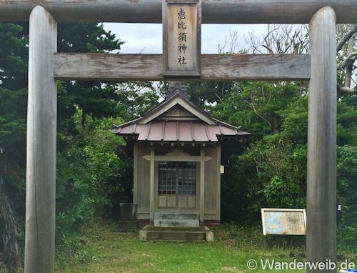 shizuoka (11 von 13)