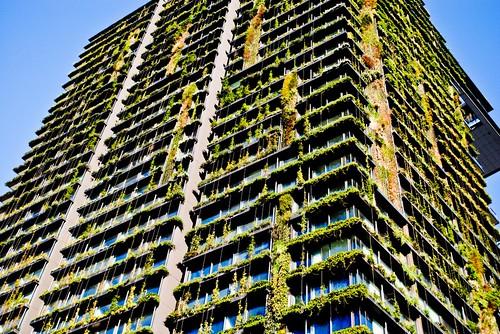 A Green Building?