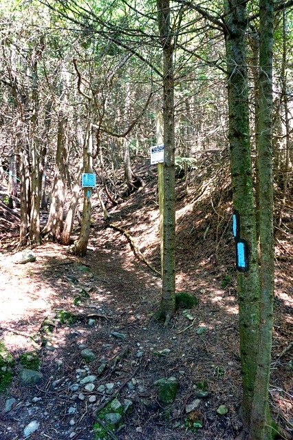 2015-07 Bruce Trail