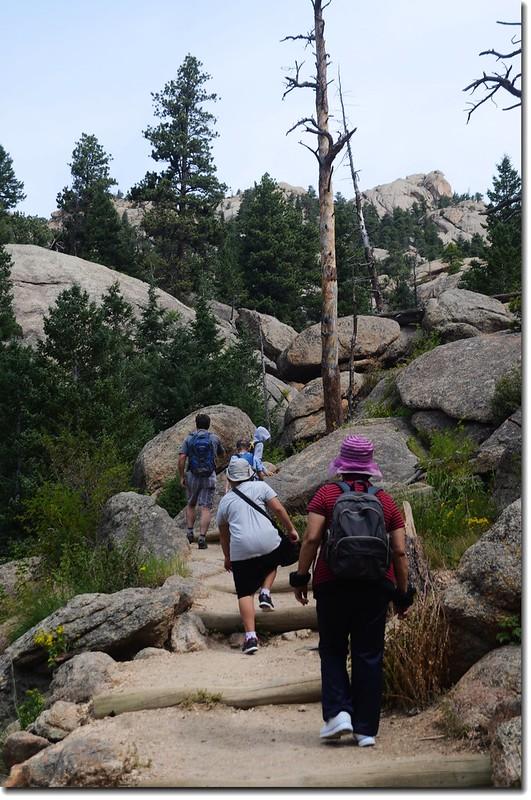 Lumpy Ridge Trail 3
