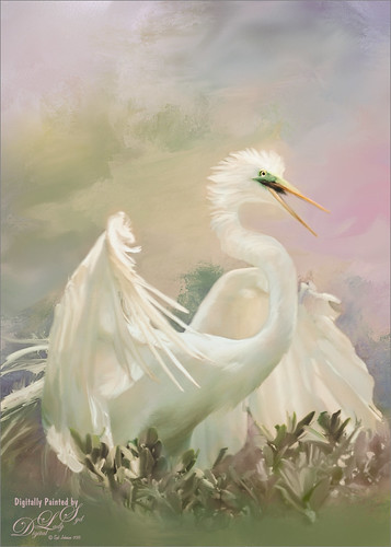 Image of an egret on a painted texture