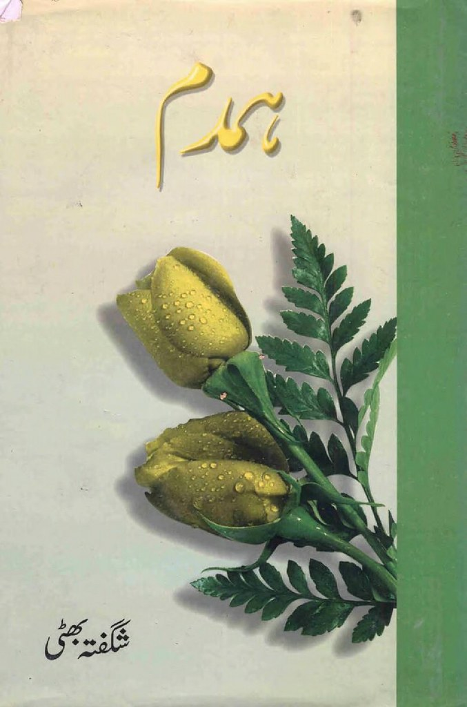 Humdum Complete Novel By Shagufta Bhatti
