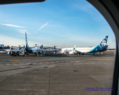 2 Boeing 737-890s Parked at #KSEA