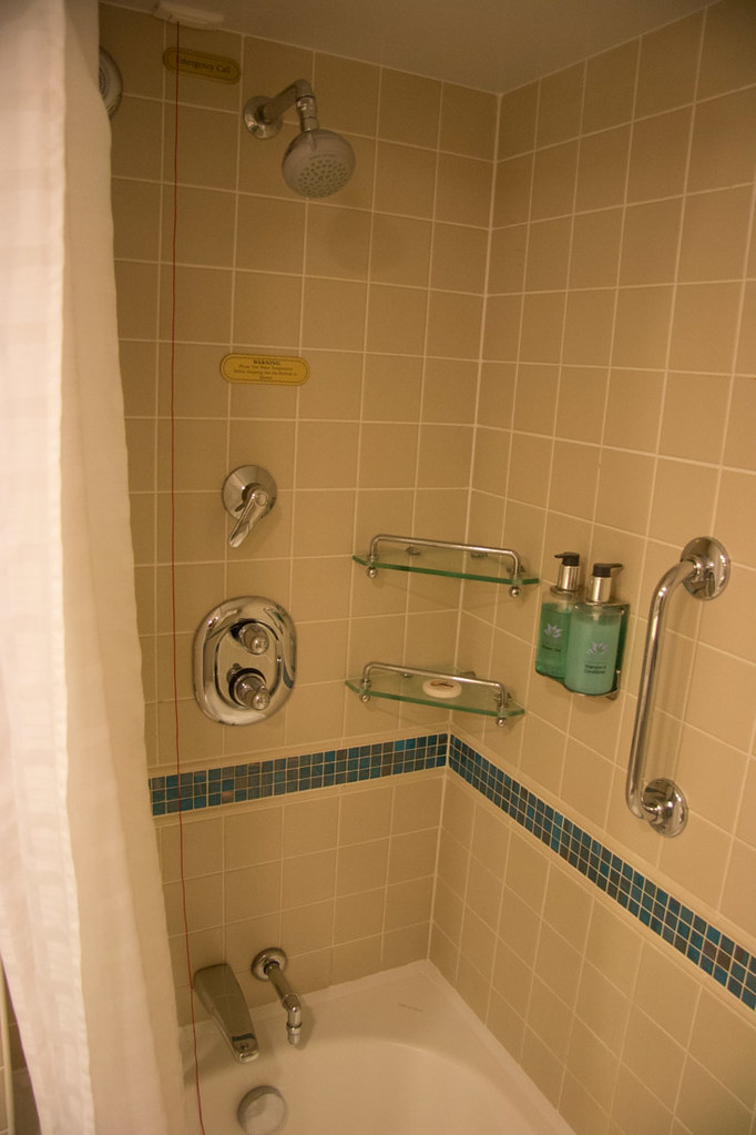 Shower and tub in the mini suite