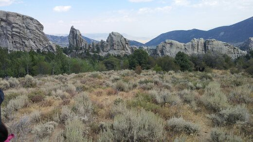 Almo, Idaho.  I rock climbed with 4  world famous climbers.