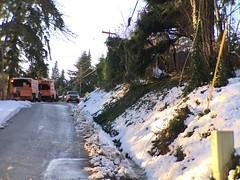 Damage in Edgewood - Asplundh crew