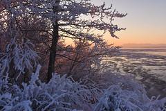 Coastal Trail in winter. Anchorage, Alaska
