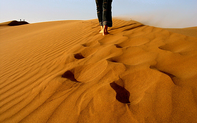 FEEL THE SAND DUNES