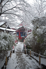 the shrine covered with snow in Tokyo