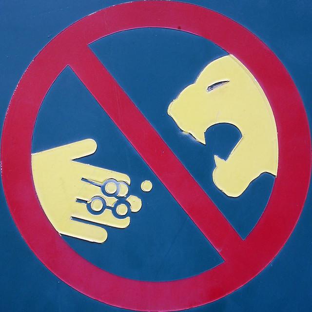 Do not feed the Thundercats