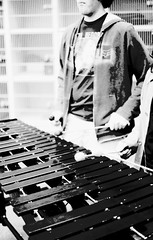 vibraphone, folk instrument, monochrome photography, monochrome, black-and-white,