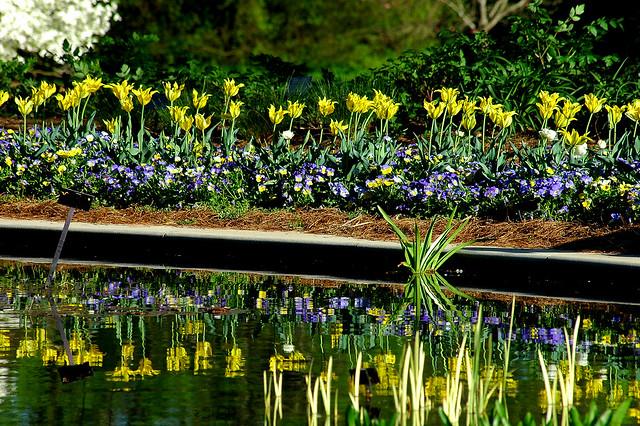 Huntsville Botanical Garden Flickr Photo Sharing
