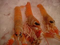 king crab(0.0), scampi(0.0), shrimp(1.0), orange(1.0), animal(1.0), dendrobranchiata(1.0), caridean shrimp(1.0), crustacean(1.0), fish(1.0), seafood(1.0), invertebrate(1.0), food(1.0),