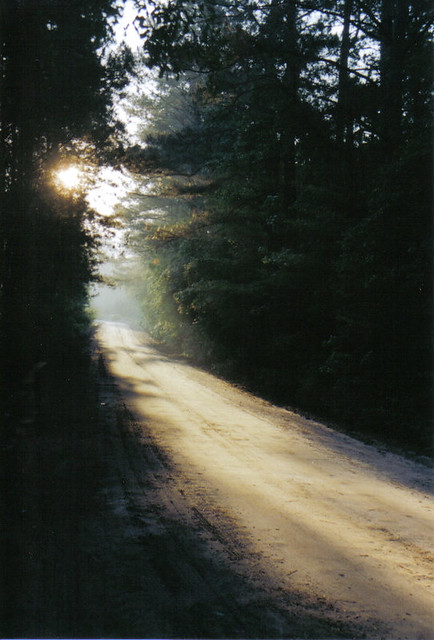 dirt road in the morning sun (evans)
