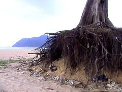 Lam puuk Beach