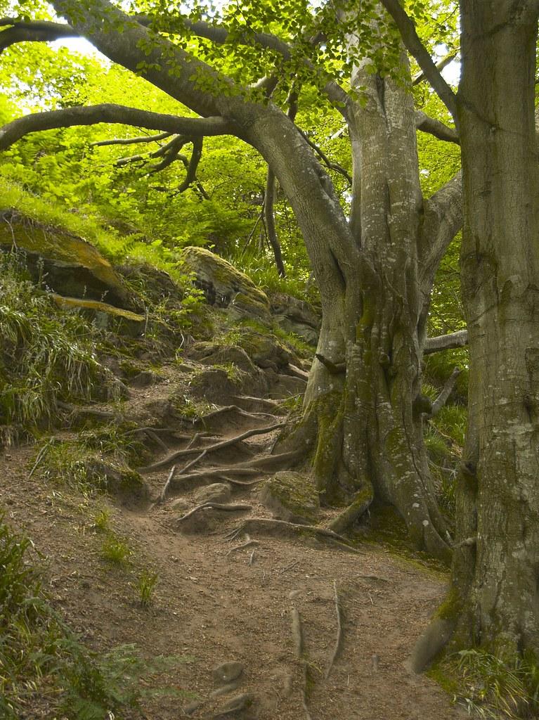 Barmoor Castle Northumberland England Tripcarta