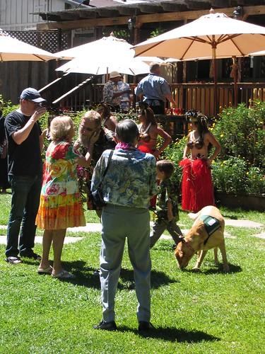 la honda, california, skylonda, wedding, au… IMG_1214