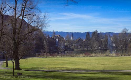 city trees wil landscape schweiz pond stadt landschaft bäume sanktgallen weiher