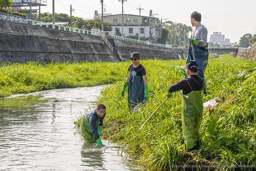 吳正綱(左一)穿著青蛙裝,涉足溪水清理垃圾。圖片提供:廖偉縉。