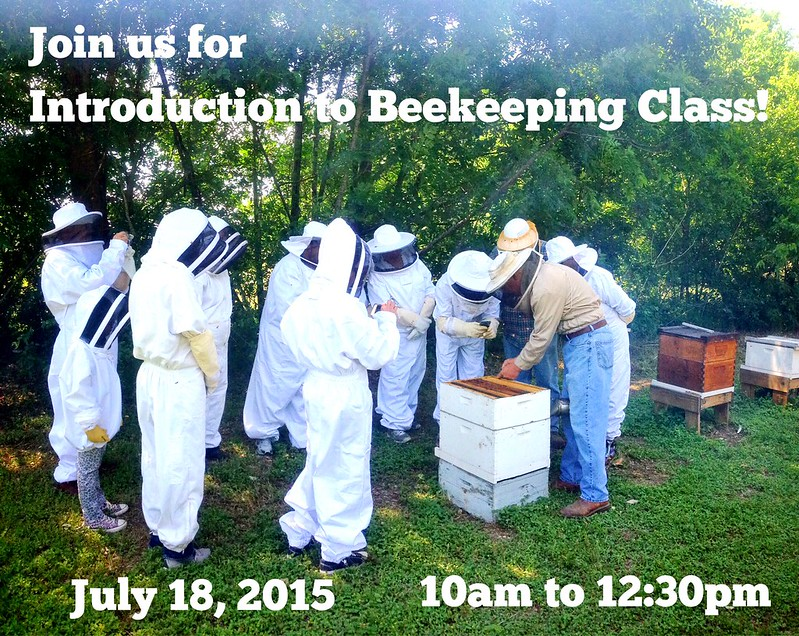 July bee class