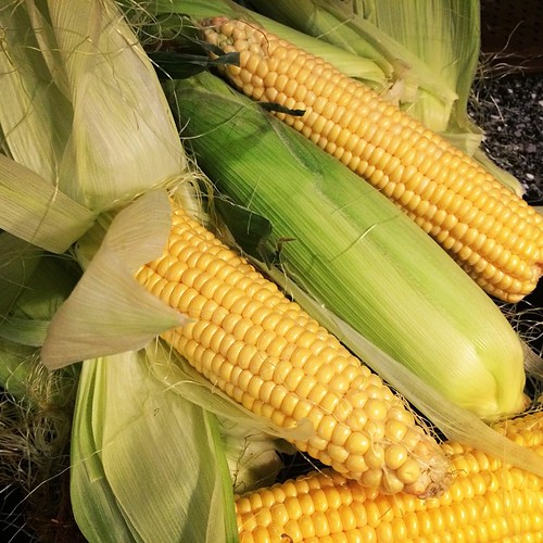 Corn season! Some shucking fun tonight. #cornonthecob #corn #freshcorn #remindsmeofhome