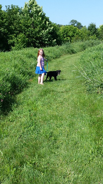 Tabby walking Willow