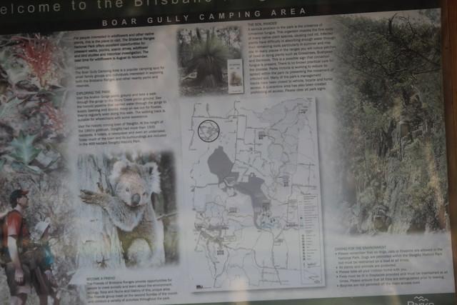 Boar Gully Camp Ground Information Board