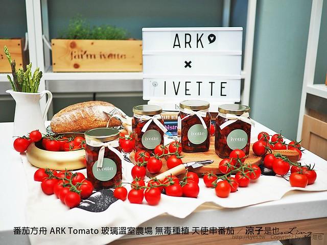 番茄方舟 ARK Tomato 玻璃溫室農場 無毒種植 天使串番茄 60