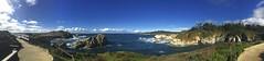 Panoramas/Point Lobos Seashore
