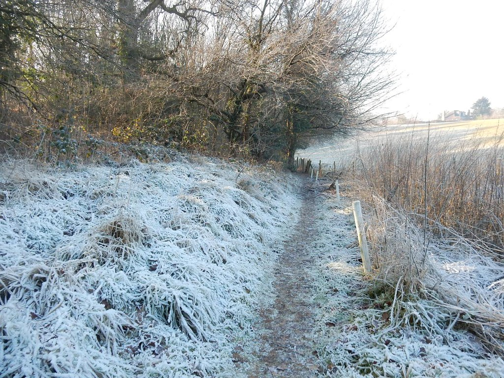 Frosty path Gerrards Cross to Cookham