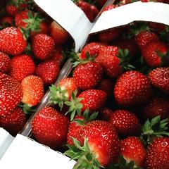 Num num num num num num! It's strawberries & cream, strawberries plain, strawberry shortcake and strawberry jam time! #boonstrafarms